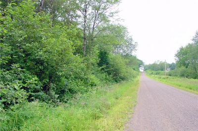 60 ACRES ON IRVINE DRIVE, Ojibwa, WI 54862 - Photo 1