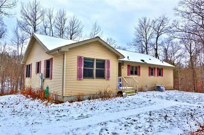 16191W W HENKS RD, Hayward, WI 54843 - Photo 1
