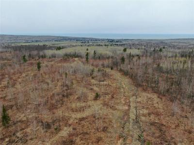 0 NEAR HALF MILE ROAD ROAD, Herbster, WI 54844 - Photo 2