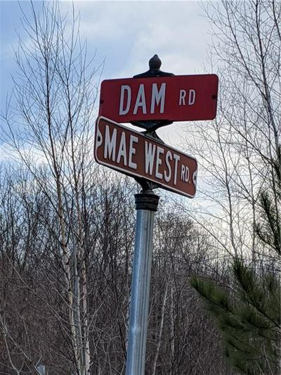 TBD DAM ROAD, Ladysmith, WI 54848 - Photo 2