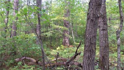 LOT 9 FIREFLY LANE, Webster, WI 54893 - Photo 2