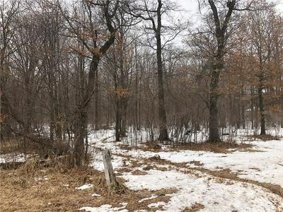 4.75 ACRES 125TH STREET, Bloomer, WI 54724 - Photo 1