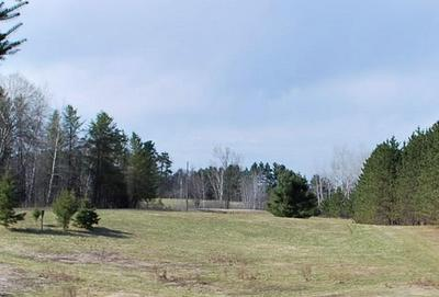 LOT 1 2.8 ACRES ON 280TH AVE, Holcombe, WI 54745 - Photo 2