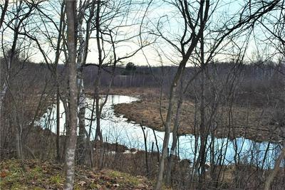 7.3 ACRES ON 182ND ST, Holcombe, WI 54745 - Photo 1