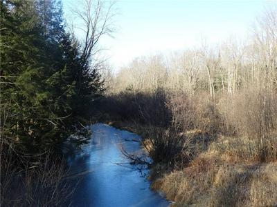 LOT 3 157TH AVENUE, Stanley, WI 54768 - Photo 1