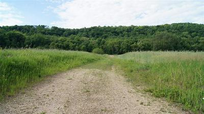 0 COUNTY RD. D, Nelson, WI 54756 - Photo 2