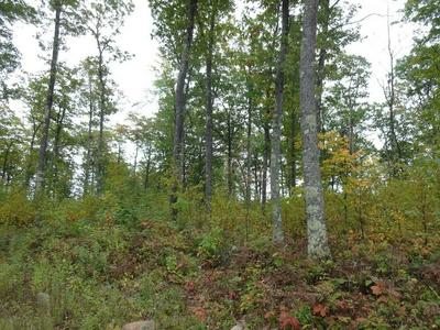 NEAR HALF MILE ROAD, Herbster, WI 54844 - Photo 2
