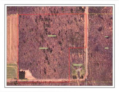 35 ACRES FLAMBEAU ROAD, Tony, WI 54563 - Photo 2