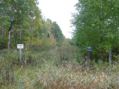 NEAR MCINERNEY ROAD, Herbster, WI 54844 - Photo 2
