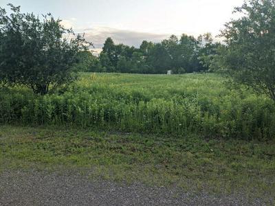 N6859 SHAMROCK LAKE RD, Hawkins, WI 54530 - Photo 2