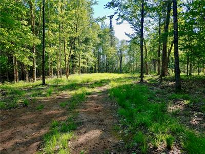 XXX (LOT 2) BLUE GILL BAY ROAD, Cable, WI 54821 - Photo 2