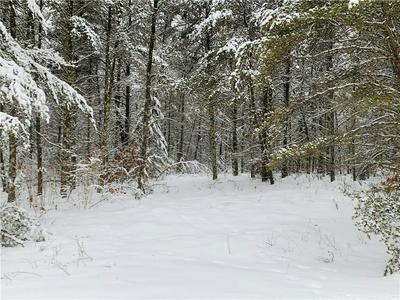 0 POW ROAD, SPRINGBROOK, WI 54875 - Photo 1