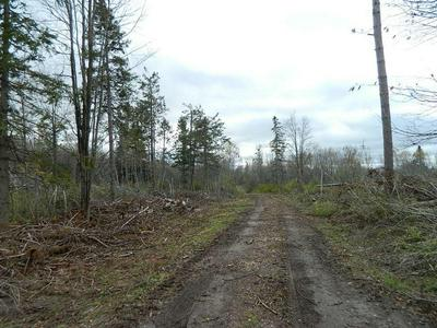 ON WESTERN BREEZE, Ojibwa, WI 54862 - Photo 1