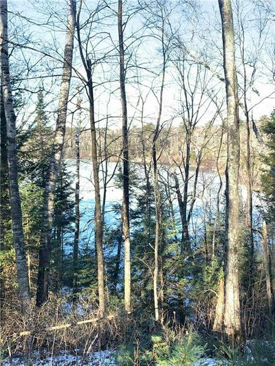 0 SECLUDED TRAIL, Hayward, WI 54843 - Photo 1