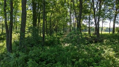 LOT 0 KELLY ROAD, Augusta, WI 54722 - Photo 2