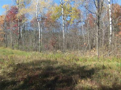 10 ACRES RIVER ROAD, Bruce, WI 54819 - Photo 1