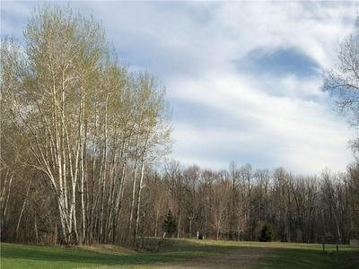SECTION 6 LOT 1 & 2 305TH AVENUE, Holcombe, WI 54745 - Photo 1