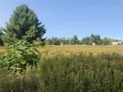 1.42 ACRES SILVER SPRING ROAD, Holcombe, WI 54745 - Photo 2