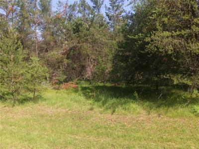 LOT 9 DICKERSON AVENUE, Willard, WI 54493 - Photo 1