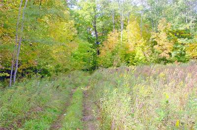 40 ACRES ON HWY. 8, Kennan, WI 54537 - Photo 2