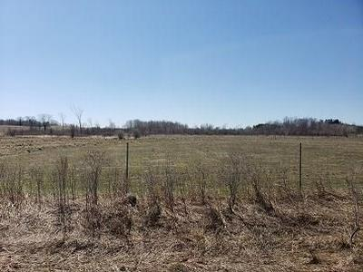 XXX 80TH AVENUE, Woodville, WI 54028 - Photo 2