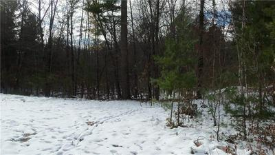 LOT 8 FIREFLY LANE, Webster, WI 54893 - Photo 2