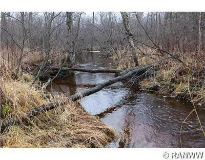40 ACRES HELSING ROAD, Ojibwa, WI 54862 - Photo 1