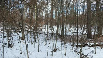 LOT 5 FIREFLY LANE, Webster, WI 54893 - Photo 2