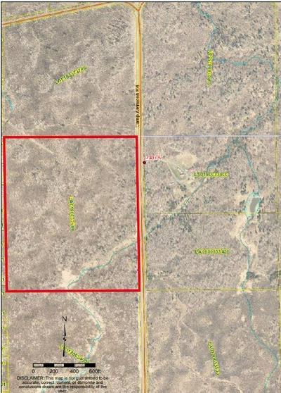 0000 CAMP AMNICON ROAD, Superior, WI 54874 - Photo 2