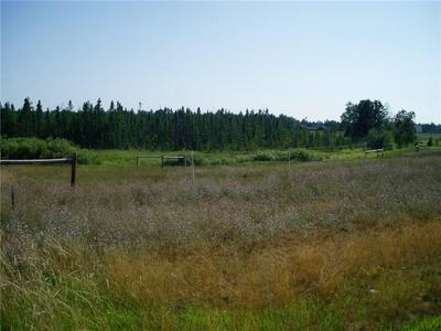 LOT 1 HOLST LANE, SPRINGBROOK, WI 54875 - Photo 2