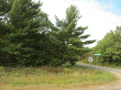 LOT 7 BLACKBERRY LANE, GORDON, WI 54838 - Photo 1