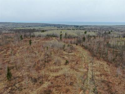 0 NEAR HALF MILE ROAD ROAD, Herbster, WI 54844 - Photo 1