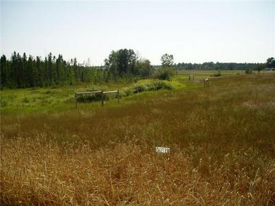 LOT 1 HOLST LANE, SPRINGBROOK, WI 54875 - Photo 1