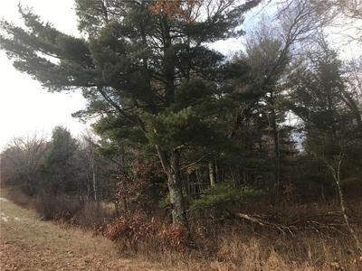 38.68 ACRES CTY HWY E, SPRINGBROOK, WI 54875 - Photo 1