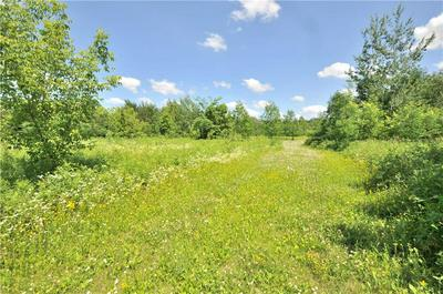 LOT 7 305TH AVENUE, Holcombe, WI 54745 - Photo 1