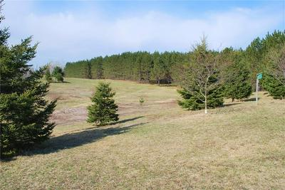 10.1 ACRES ON 182ND ST, Holcombe, WI 54745 - Photo 2