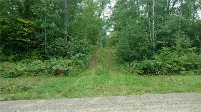 0000 HADDICK RD, SPRINGBROOK, WI 54875 - Photo 2