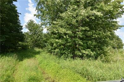 0 HWY 8, CAMERON, WI 54822 - Photo 2