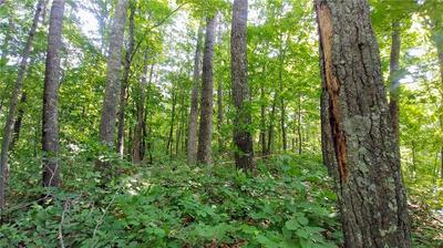 LOT 1 CRYSTAL POINT ROAD, Birchwood, WI 54817 - Photo 2