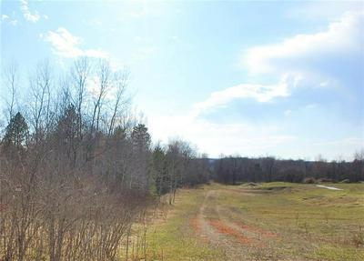 7.3 ACRES ON 182ND ST, Holcombe, WI 54745 - Photo 2