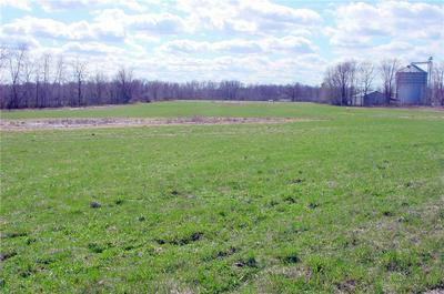 10 ACRES ON CTY. RD. G, Conrath, WI 54731 - Photo 1