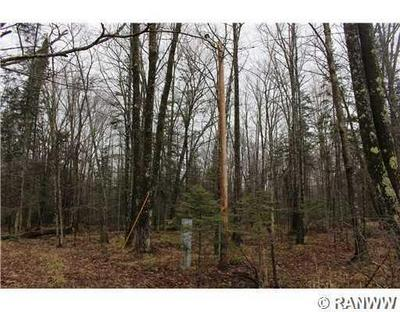 40 ACRES HELSING ROAD, Ojibwa, WI 54862 - Photo 2