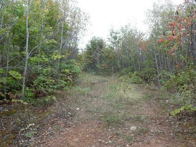 NEAR OLD ROAD, Herbster, WI 54844 - Photo 2