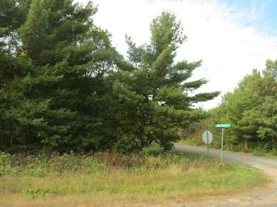 LOT 15 ST CROIX ROAD, GORDON, WI 54838 - Photo 1