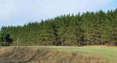 LOT 1 2.8 ACRES ON 280TH AVE, Holcombe, WI 54745 - Photo 1
