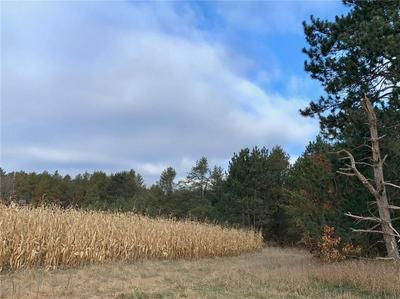0 N ELCO ROAD, FALL CREEK, WI 54742 - Photo 2