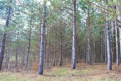 LOT 2 2.4 ACERS ON 280TH AVE, Holcombe, WI 54745 - Photo 2