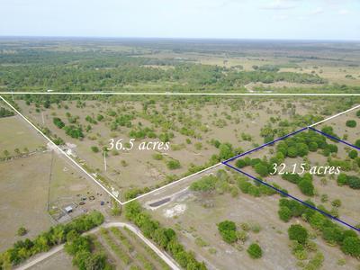 2222 SW ARROWROOT AVENUE, Indiantown, FL 34956 - Photo 2