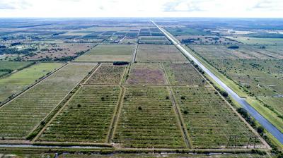 TBD SCHUMANN W ROAD, Fort Pierce, FL 34945 - Photo 1