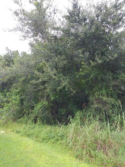 389 NW NORTH MACEDO BLVD, Port Saint Lucie, FL 34983 - Photo 1